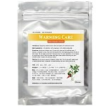 Warming Care Patch 熱膏貼  (辣椒膏)